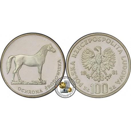 100 zł, Koń - 1981 r.