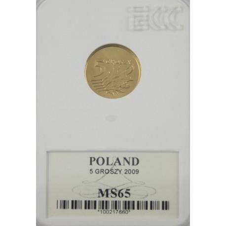 5 groszy 2009 MS 65